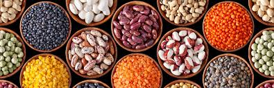 Legumes For Strong Business, Nutrition