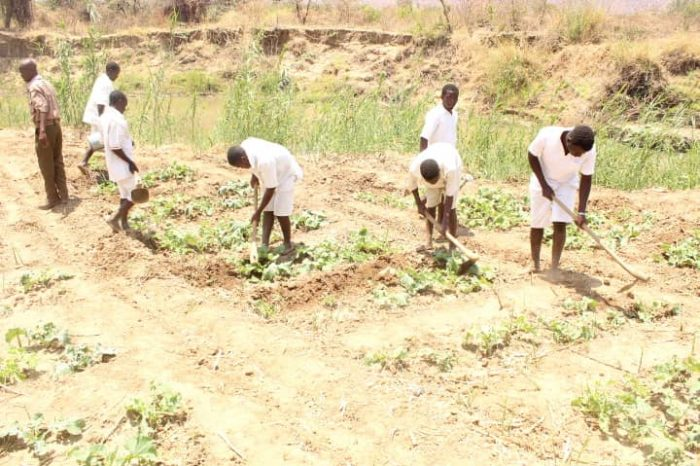 Farmers Encouraged to Adopt Ecological-Friendly Agricultural Practices