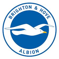 Brighton & Hove Albion F.C. - Wikipedia