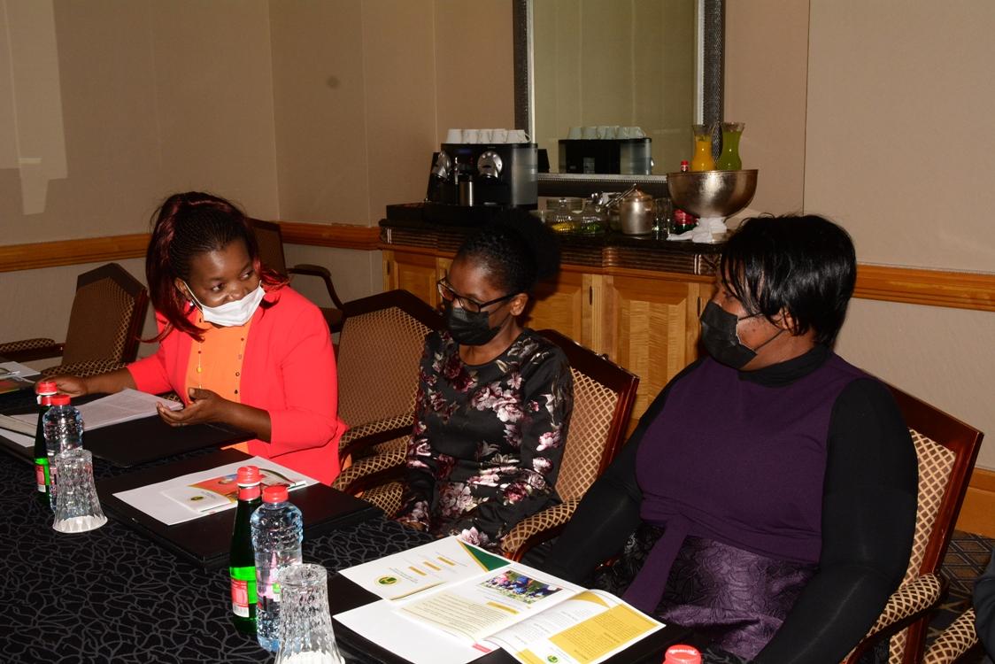 Malawian Ladies during the meeting with Madame Monica Chakwera in Dubai, United Arab Emirates-(c) Abel Ikiloni, Mana